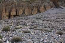 anilkr_moonscapes_spiti1